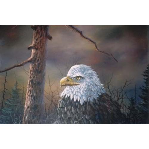 8988 TREE CRESTED EAGLE